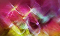 Moving-colours-9357