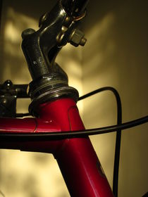 A Study in Scarlet Bicycle by Guy  Ricketts