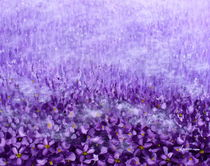 Purple Field by Kume Bryant