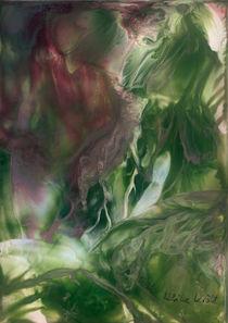 Pflanzenwelt von Ulrike Kröll