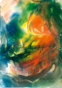 Sich spiegelnde Morgensonne  by Ulrike Kröll
