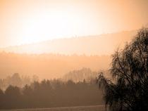 Sonnenaufgang im Nebel von Thomas Brandt