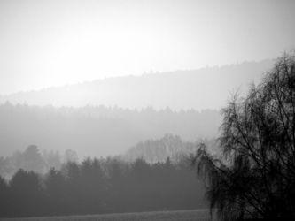Nebel-2