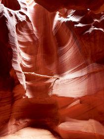 light source von Peter Tomsu