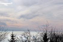 Winterlicher Sonnenaufgang von Thomas Brandt