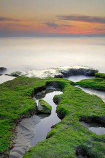Green white a red coast by Guido Montañes