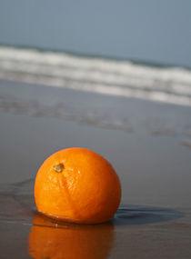 The orange von camera-rustica