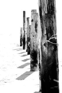 Barrier by Peter Steinhagen