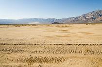Erosion von Peter Tomsu