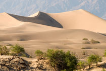 Sand Shapes by Peter Tomsu
