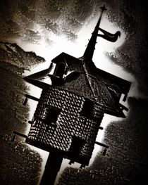 A SPOOKY LITTLE BIRDHOUSE by mimulux