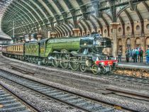 Flying Scotsman by Allan Briggs