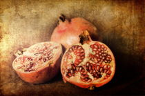 Pomegranates von Pauline Fowler