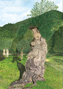 Olivenbaum von Ulrike Kröll