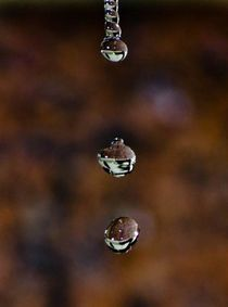 forming drops by bruna grassi