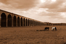 Harringworth Viaduct and Horses Grazing by Louise Heusinkveld
