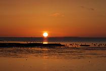 Glühender Horizont von Michaela Rau
