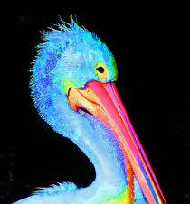 Pelican Partygoer 3 by Margaret Saheed
