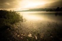 Verträumter Bodensee von Marc Seeh