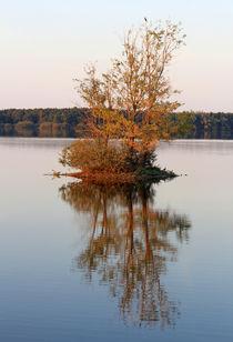 Einsame Insel von Wolfgang Dufner