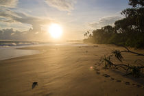 Sri Lanka Beach by spotcatch-net-photography