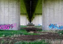 viaduct by Bert-Jan Rietveld