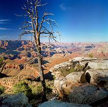 Grand-canyon-blue-skies