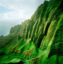 Green Kauai by Peter Tomsu