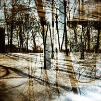 Have a walk by Maxim Kool