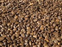 Kaffeebohnen von Kurt Wilhelm