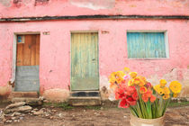 Guate-house-flowers1