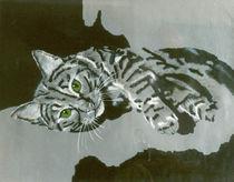 Katze von Anke Wetter