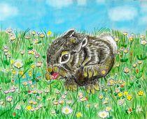 kleines Kaninchen auf der Flucht von Heidi Schmitt-Lermann