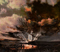Tree Romance by florin