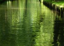green impression von Franziska Rullert