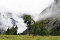 Alpenbild von Jens Berger