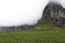 im Nebel by Jens Berger