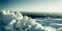 Turoa Icy Landscape von Stas Kulesh