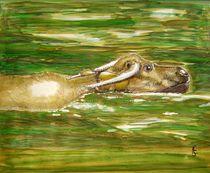 Wasserbüffel von Heidi Schmitt-Lermann