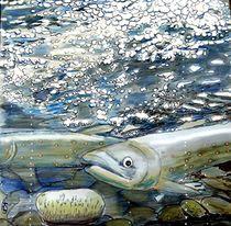 Der Lachs von Heidi Schmitt-Lermann