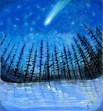 Komet by Heidi Schmitt-Lermann