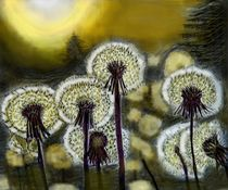 nächtliche Pusteblume von Heidi Schmitt-Lermann