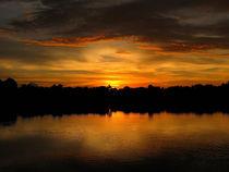 Miami's Sunset by Zoila Stincer