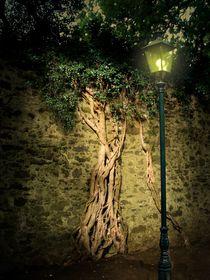 Licht im Dunkel by Elke Balzen
