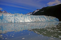 maeres Glacier in Alaska von Reinhard Pantke