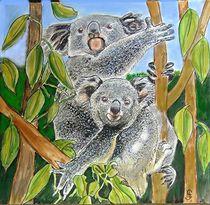 Koalabären von Heidi Schmitt-Lermann
