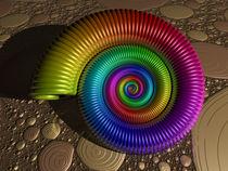 Ammonit auf Fraktalgrund by Frank Siegling