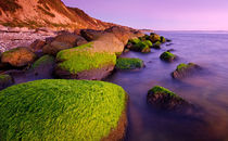 Mossy Rocks on the Beach von Keld Bach