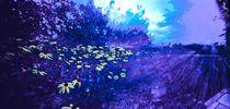 Idian summer blues by jan-martinsky