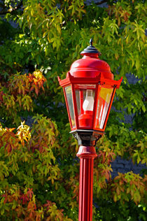 RED LANTERN AND AUTUMN LEAVES  von John Mitchell